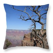 Dead Tree At The View Point Throw Pillow