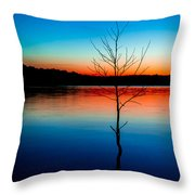 Dead Tree Beauty At Sunset Over Table Rock Lake Throw Pillow