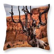 Dead Tree Throw Pillow