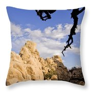 Dead Tree Limb Hanging Over Rocky Landscape In The Mojave Desert Throw Pillow