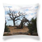 Dead Tree - Natural Bridges National Park Throw Pillow