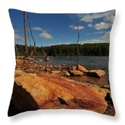 Dead Trees And Rocks Throw Pillow