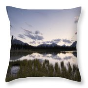 Dead Trees At Buller Pond Throw Pillow