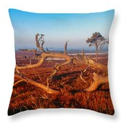 Dead Trees, Southern Uplands Throw Pillow