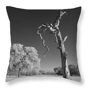 Dead Weathered Throw Pillow
