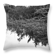 Deadfall Reflection In Black And White Throw Pillow