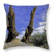 Death Of A Cactus Throw Pillow