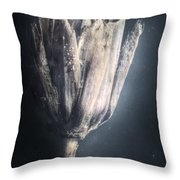 Death Of A Drowning Throw Pillow