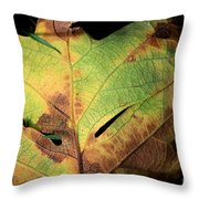 Death Of A Leaf Throw Pillow