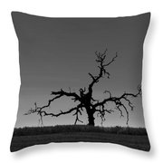 Death Of A Tree Throw Pillow