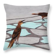 Death Valley Birds Throw Pillow