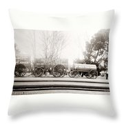Death Valley Borax Mule Team Throw Pillow