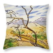 Death Valley- California Sketchbook Project Throw Pillow