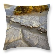 Death Valley Mudflat Throw Pillow