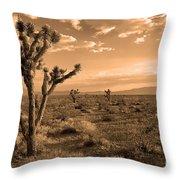 Death Valley Solitude Throw Pillow