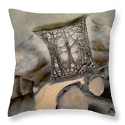 Debris 9b Throw Pillow