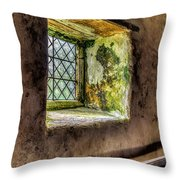 Decay Throw Pillow by Adrian Evans