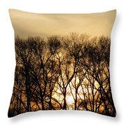 December Forest Dusk Throw Pillow