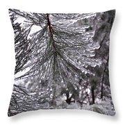 December Freeze  Throw Pillow