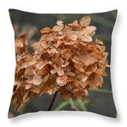 December Hydrangea II Throw Pillow