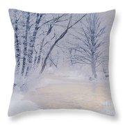 December Riverscape Throw Pillow