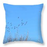 December Sandhill Cranes  Throw Pillow