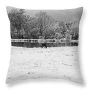 December Snow 006 B-w Throw Pillow