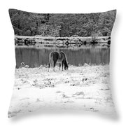 December Snow 007 B-w Throw Pillow