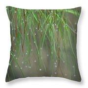 December's Green Throw Pillow