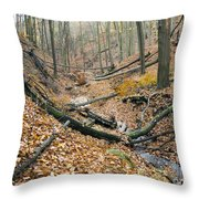 Deciduous Forest With Ravines Throw Pillow