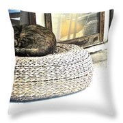 Deck Cat Throw Pillow