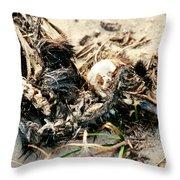 Decomposing Dead Bird Throw Pillow