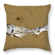 Decomposing Dead Fish Carcass Washed Ashore Throw Pillow