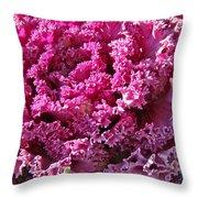 Decorative Fancy Pink Kale Throw Pillow