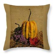 Decorative Gourd  Throw Pillow
