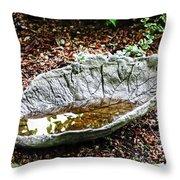 Decorative Leaf Birdbath Throw Pillow