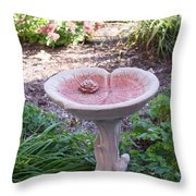 Decorative Lilypad Birdbath Throw Pillow