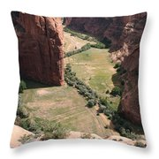 Deep Canyon De Chelly Throw Pillow