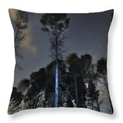 Deep Forest At Night Throw Pillow