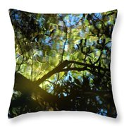 Deep Forest Light Throw Pillow