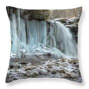 Deep Freeze Throw Pillow