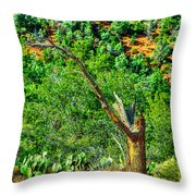 Deep In The Desert Of Arizona Green Grows Throw Pillow