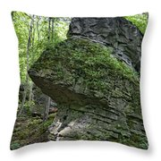Deep In The Gorge Throw Pillow