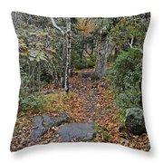Deep In The Woods Throw Pillow by Susan Leggett
