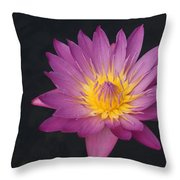 Deep Pink And Yellow... Throw Pillow