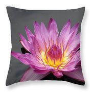 Deep Pink With Yellow... Throw Pillow