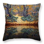 Deep Pond Reflections Throw Pillow