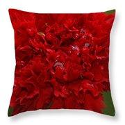 Deep Red Carnation 2 Throw Pillow