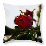 Deep Red Roses Throw Pillow