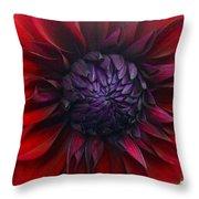 Deep Red To Purple Dahlia Flower Throw Pillow
